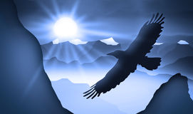Eagle. Is flying above the valley Royalty Free Stock Image