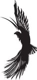 Eagle. Vector abstract drawing of soaring eagle Royalty Free Stock Photo