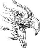 Eagle ilustración del vector
