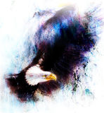 Eagle on an abstract background,color with spot structures Royalty Free Stock Photography