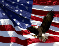 Eagle and American flag Stock Photography