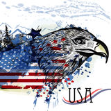 Eagle with American flag. Symbol of USA Stock Photos