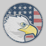 Eagle American icon Royalty Free Stock Photos