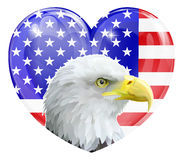 Eagle American love heart. Eagle America love heart concept with and American bald eagle in front of an American flag in the shape of a heart Stock Illustration