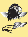 Eagle art tattoo. A graphic illustrator to design a rock Royalty Free Stock Photos