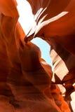 Eagle au canyon inférieur d'antilope photos libres de droits