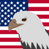 Eagle on the background of the American flag icon, flat style. 4th july concept. Vector illustration. Eagle on the background of the American flag icon, flat vector illustration