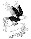 Eagle with Banner. Hand-drawn eagle holding a banner.  Space on banner is ready for your text.  Colors can be edited easily Stock Images