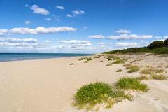 Eagle Bay. On Geographe Bay in western Australia royalty free stock photos