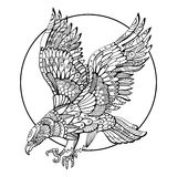 Eagle bird coloring book for adults vector Royalty Free Stock Images