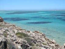 Eagle bluff, shark bay, western australia Stock Image