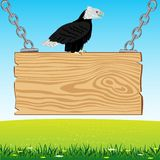 Eagle on board from tree Royalty Free Stock Photos