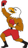 Eagle Boxer Pumping Fist Cartoon chauve Photo stock