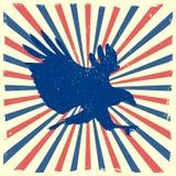 Eagle burst background Stock Image