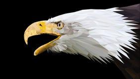 Eagle calvo nel basso poli stile Illustrazione di vettore illustrazione vettoriale