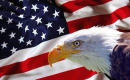 Eagle calvo nordamericano sulla bandiera americana Fotografia Stock Libera da Diritti