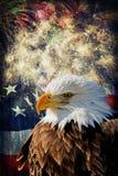 Eagle calvo y fuegos artificiales imagen de archivo