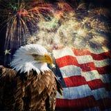 Eagle calvo y fuegos artificiales Foto de archivo