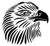 Eagle, cappello dell'aquila Fotografia Stock Libera da Diritti