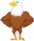Eagle cartoon Stock Photo