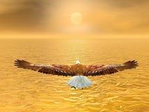 Eagle che va al sole - 3D rendono Immagini Stock Libere da Diritti