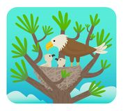 Eagle and Chicks. Clip art of an eagle with it`s chicks in a nest on a tree. Eps10 Stock Photos