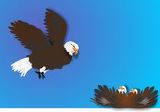 Eagle and Chicks illustration. Eagle soaring above, looking for prey  to feed the babies Royalty Free Stock Photos