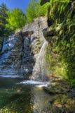 Eagle Cliff Falls, laghi finger, NY Fotografie Stock Libere da Diritti