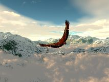 Eagle in the cold mountains Royalty Free Stock Photo