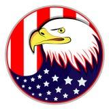 Eagle con la bandera americana Foto de archivo