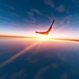 Eagle contro il sole di orizzonte Fotografia Stock
