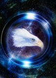 Eagle in cosmic space and light circle. original painting collage. Mirror on the planet Earth. Animal concept, Profile Stock Image