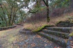 Eagle Creek Overlook Hiking Trail em Oregon foto de stock royalty free