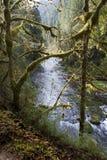 Eagle Creek Trail Stock Photo
