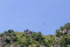Eagle, das über die Felsen fliegt Lizenzfreies Stockbild