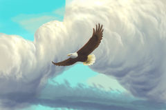 Eagle, das in den Himmel fliegt Stockfotos