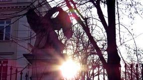 Eagle in der Sonne während des Sonnenuntergangs Lizenzfreie Stockfotografie