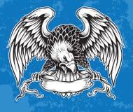 Eagle dibujado mano detallada ilustración del vector