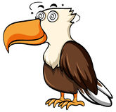 Eagle with dizzy face Royalty Free Stock Photos