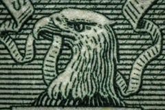 Eagle Dollar Macro Imagen de archivo libre de regalías