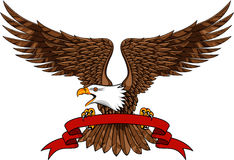 Eagle with emblem Stock Image