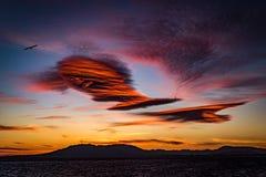 Eagle en de Wolken stock afbeelding