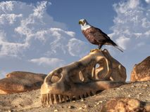 Eagle en Dinosaurusschedel vector illustratie