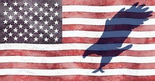 Eagle en vlag Stock Foto