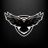 Eagle en vuelo, logotipo, símbolo Foto de archivo libre de regalías
