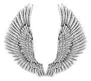 Eagle of engelenvleugels stock illustratie