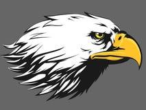 Eagle Face Vector - Side View Cartoon Stock Photography