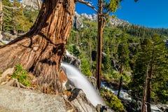 Eagle Falls at Lake Tahoe - California, USA. Eagle Falls at Lake Tahoe in California, USA Royalty Free Stock Images