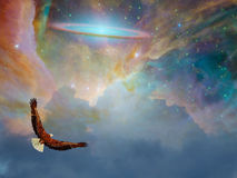 Eagle in fantasy Flight Stock Photography