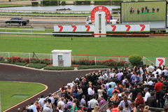 Eagle Farm Racourse as part of Melbourne Cup Royalty Free Stock Images